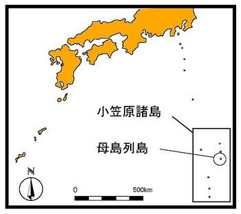 母島.jpg